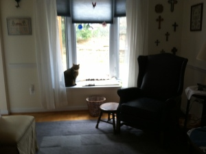 Henry, settling for the bay window while he waits for a lap.