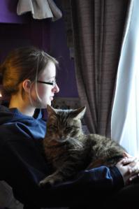 cattender