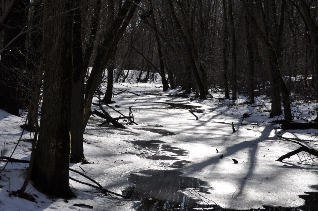 2014-02-22 CnO Canal 1