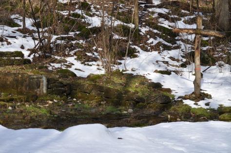 2014-02-22 shep spring2