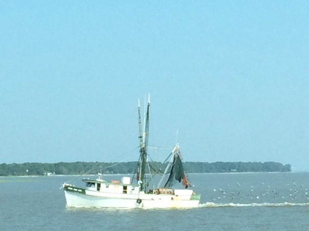Shrimper coming in with a catch to St. Helena Island, SC