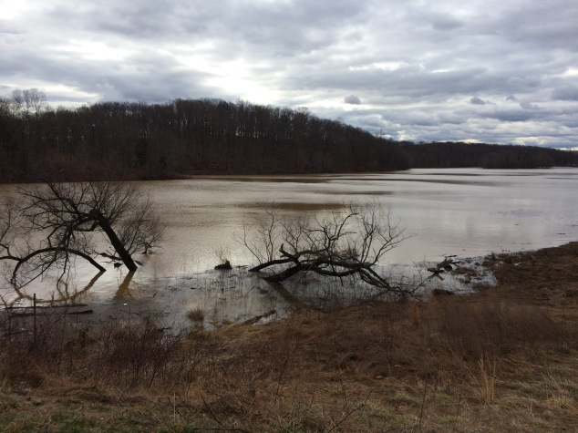 Lake Needwood, flooded. Photo credit: Rev. Deb Vaughn