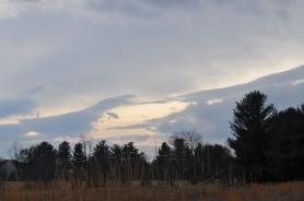 cloudsandtrees